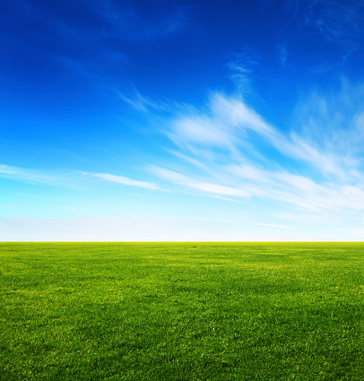 Image of green grass field and bright blue sky 157073309
