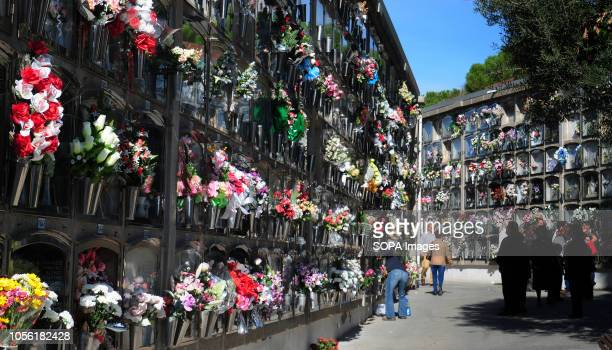 HOSPITALET BARCELONA SPAIN Image of one of the streets of the Municipal Cemetery of L'Hospitalet City where the tombs are filled with flowers from...