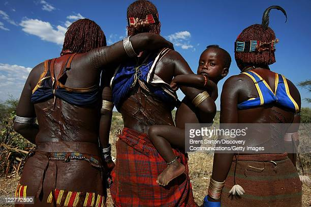 Images of the Hamar tribe at a traditional bulljumping ceremony on December 14 2007 in the Omo Valley South West Ethiopia The bulljumping ceremony is...