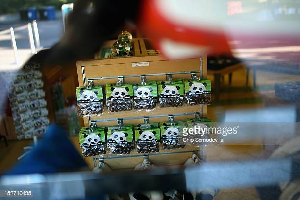 Images of the Smithsonian National Zoological Park's giant pandas is displayed in a gift shop the day after the death of a sixdayold panda cub at the...