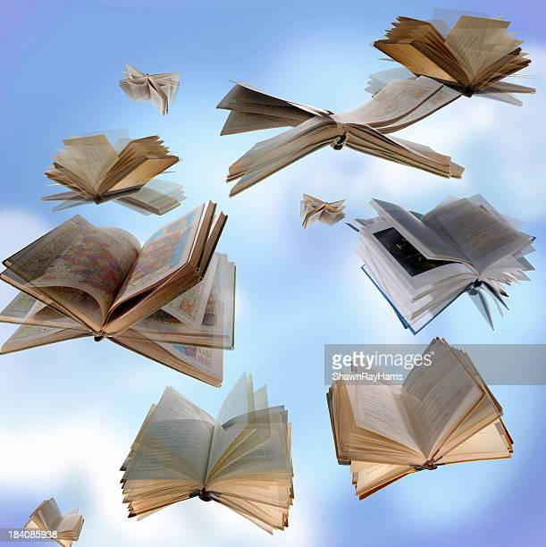Imaginations fly with a good book