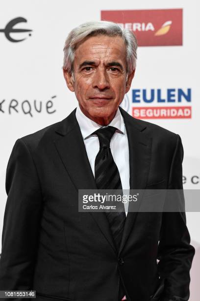 Imanol Arias attends the red carpet during 'Jose Maria Forque Awards' 2019 at Palacio de Congresos on January 12 2019 in Zaragoza Spain