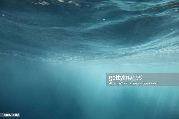 immersed in peace (mediterranean) - underwater stock pictures, royalty-free photos & images