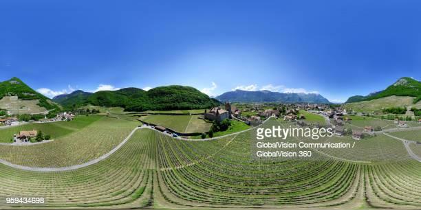 360° immersive aerial view of vineyards in aigle, switzerland - 全天周パノラマ ストックフォトと画像