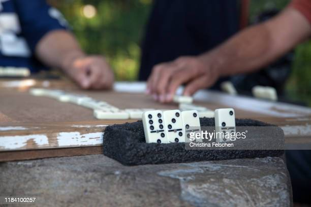 immigrant men playing domino at a park in harlem, new york, usa - christina felschen stock pictures, royalty-free photos & images