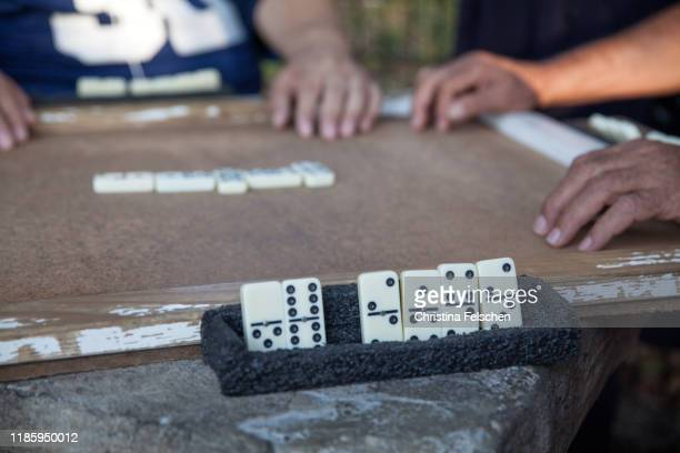 immigrant men playing domino at a park in harlem - christina felschen stock photos and pictures
