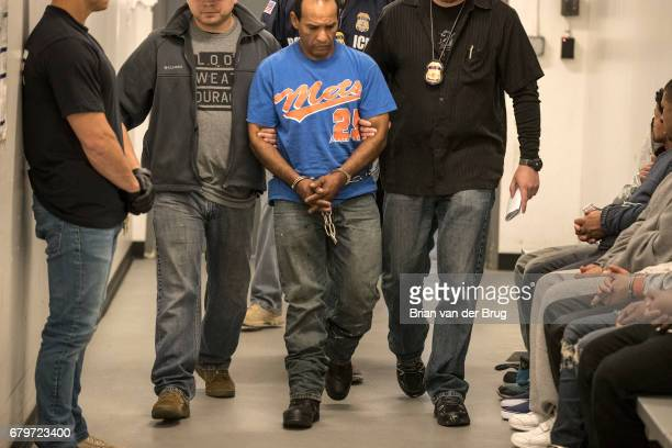 LOS ANGELES CALIF TUESDAY APRIL 18 2017 Immigration and Customs Enforcement agents lead handcuffed green card holder Sergio Rodriguez into the ICE...