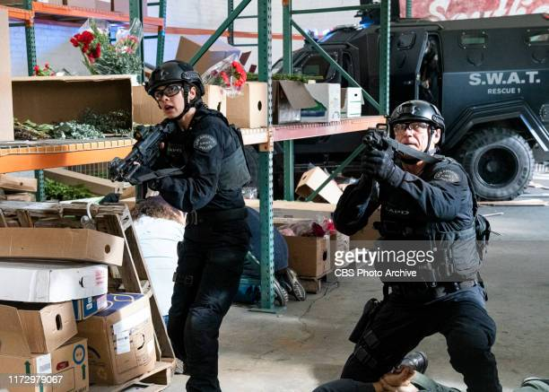 Immunity Deacon's family gets caught in the crosshairs of a drug cartel when he and the SWAT team aim to bring down its leader a former foreign rebel...