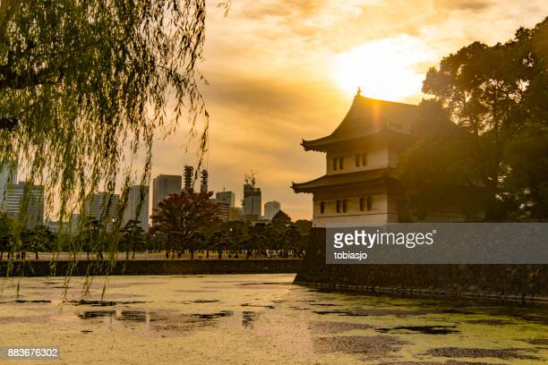 imperial palace east garden tokyo - east stock pictures, royalty-free photos & images