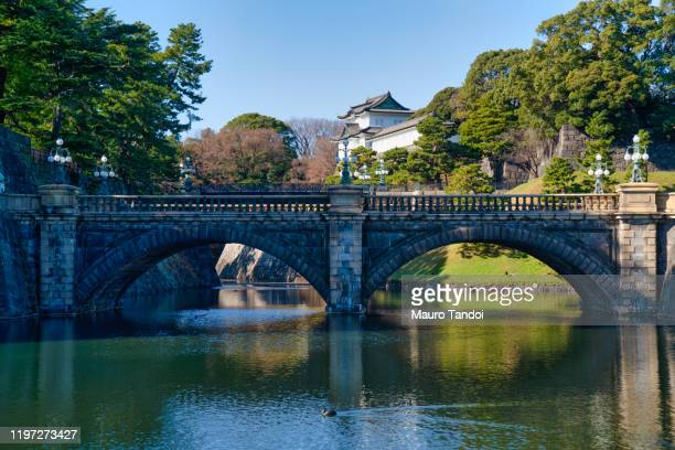 imperial palace, tokyo. - mauro tandoi stock pictures, royalty-free photos & images