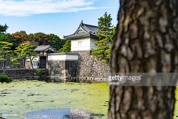 imperial palace, tokyo - imperial palace tokyo stock pictures, royalty-free photos & images