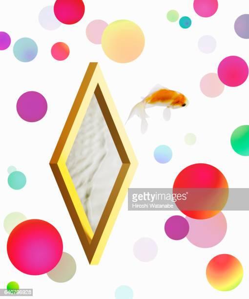 Impossible Shape with goldfish