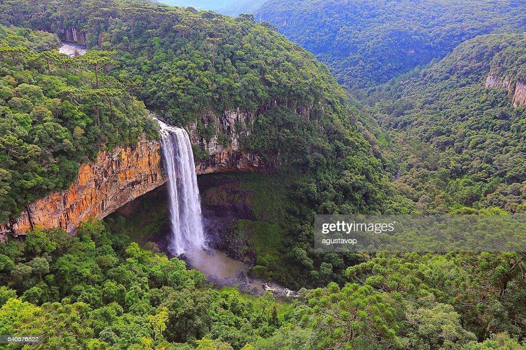 Impressive Caracol falls, Canela, Rio Grande do Sul, Brazil : Stock Photo