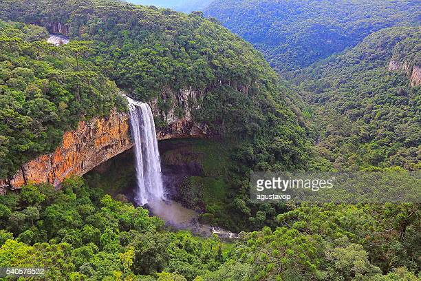 impressive caracol falls, canela, rio grande do sul, brazil - brazil stock pictures, royalty-free photos & images
