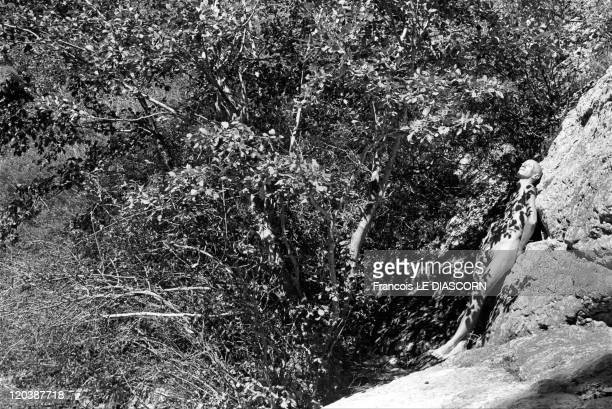 Improbable trees in Drome France A man nud with shadows of leaves on his body Drome department of France