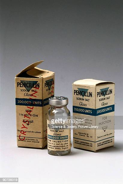 In 1928 Alexander Fleming discovered that the Penicillium mould produced a substance toxic to bacteria which he called penicillin ln 1940 a team at...