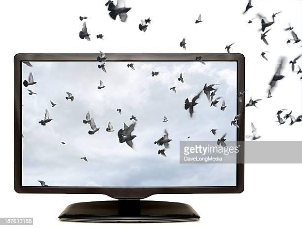 tv em 3d - monitor flat screen - fotografias e filmes do acervo