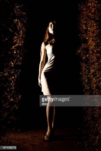 In a Dark Hedge Maze