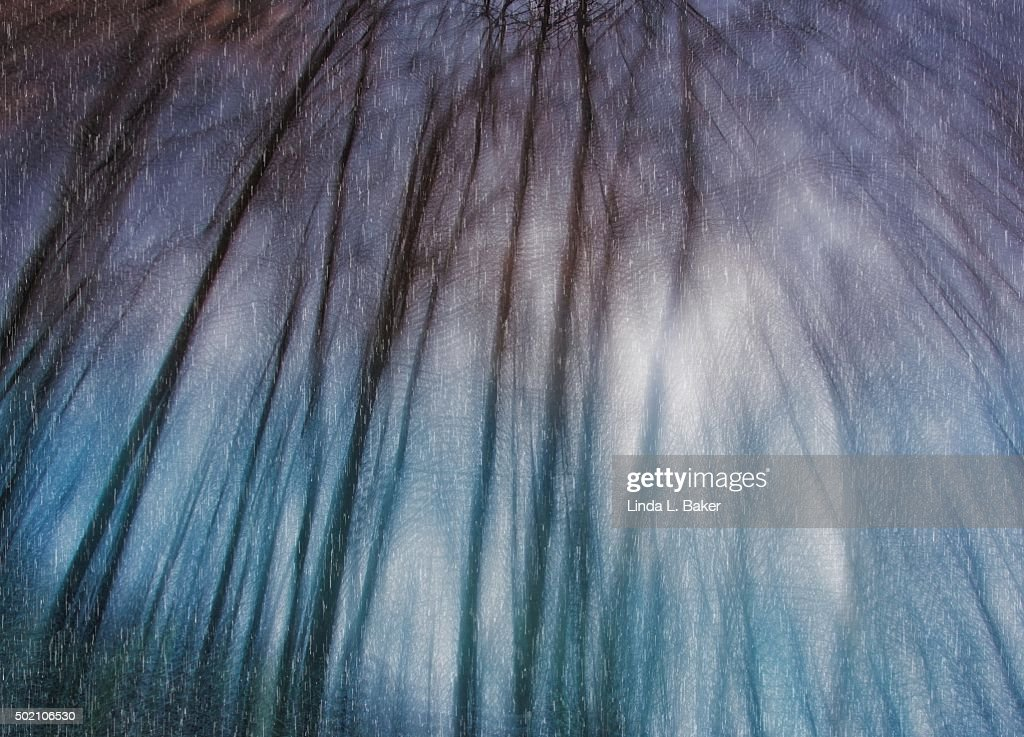 In a Deep and Dark December : Stock Photo