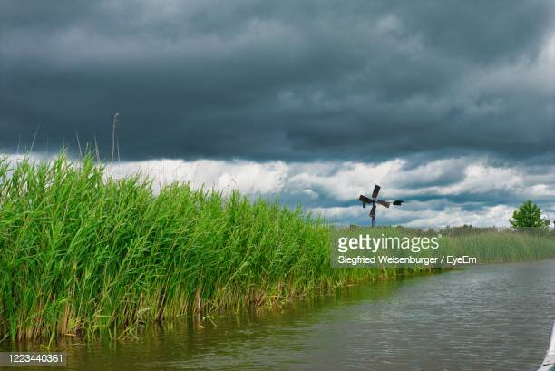 in a dutch national park shortly before a summer storm - overijssel stock pictures, royalty-free photos & images
