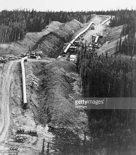 In a hilly area ten miles north of the Yukon River workers prepare 48inchdiameter pipe for burial in the construction of the TransAlaska Pipeline...