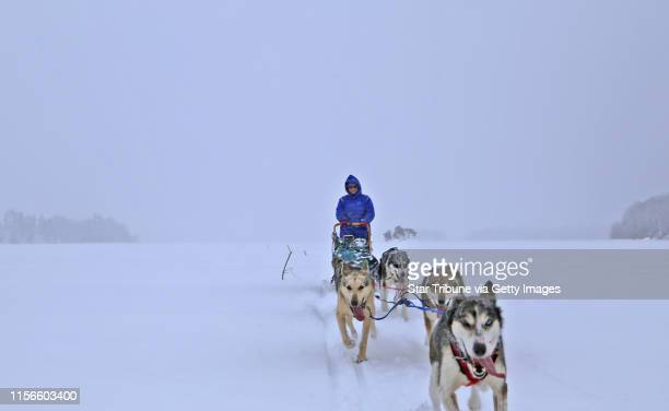 In a virtual whiteout, Shelby McEntyre of Ely guides her dog team into the Boundary Waters Canoe Area Wilderness. With her dad, Stu, mother Jeanne...