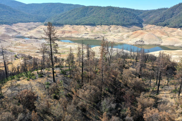 CA: California's Drought Brings Lake Oroville To Historic Low Level