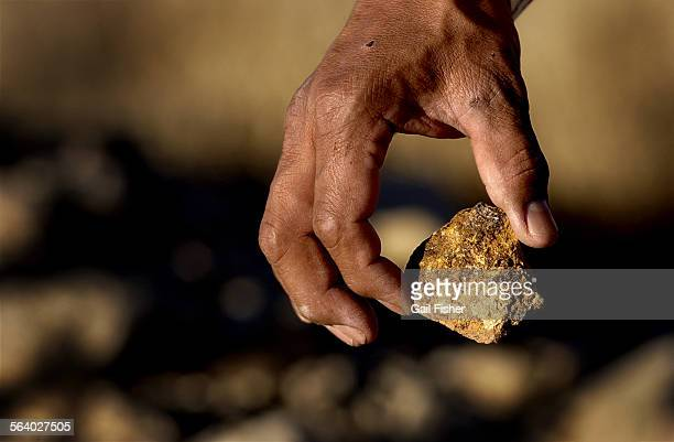 In an area near a reclaimed pit mine in Oljato, Utah, the dumping site of the contaminated Holiday hogan, chunks of uranium lay scattered among the...