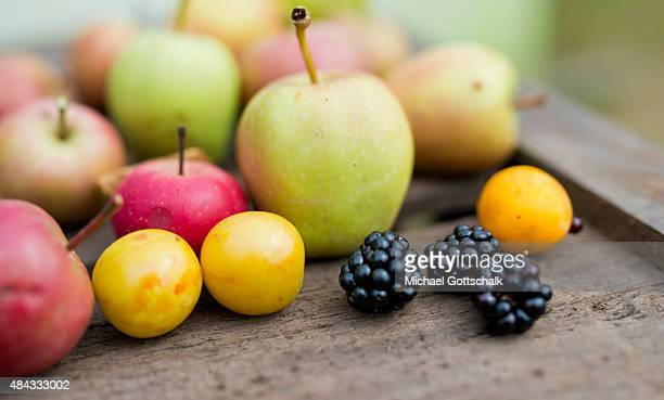 30 Top Obst Pictures, Photos, & Images - Getty Images