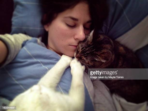 In bed with cats in the morning