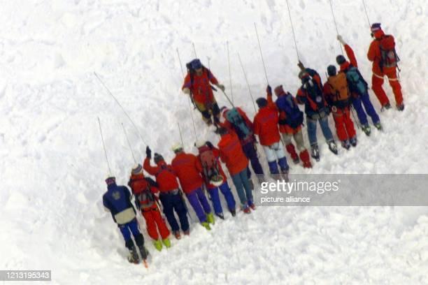 In einer Reihe suchen Bergretter am 3111999 mit Stabsonden in einem Lawinenfeld auf dem Klausenberg bei Aschau nach verschütteten Personen Bis zum...