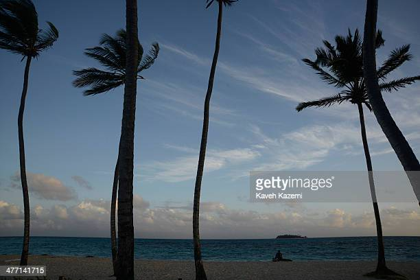 In front of palm trees a man sits on a tree trunk by the beach in front of Johnny Cay coral islet located 15 km to the north of San Andres on January...