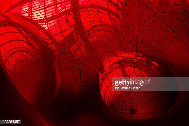 in gut of beast - animal digestive system stock photos and pictures