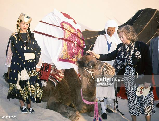 In her trip to the USSR the Spanish Queen Sofia caresse a camel Tunis Tunisia