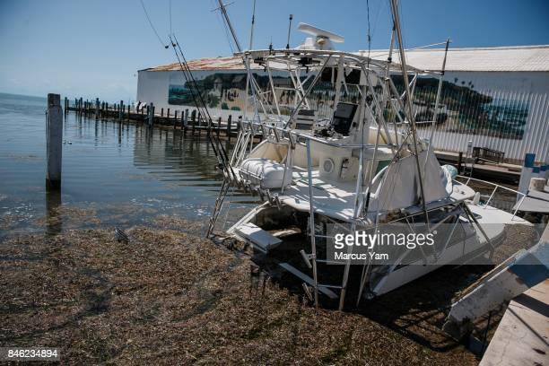 in Islamorada Florida Keys on Sept 12 2017