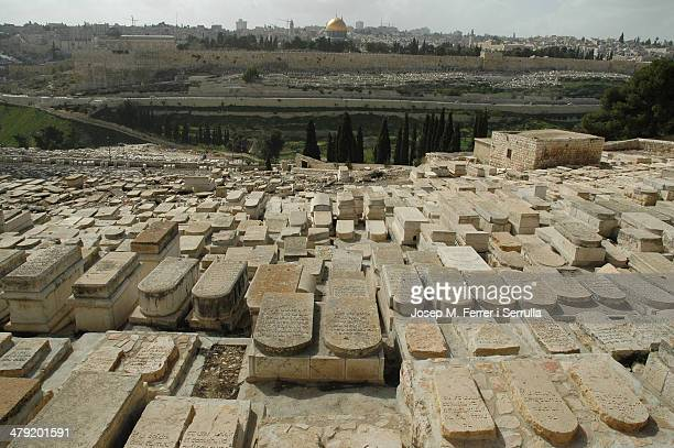 In Israel every stone is sacred and reason for conflict between religions and social groups. So much so that everyday life is truly difficult for its...