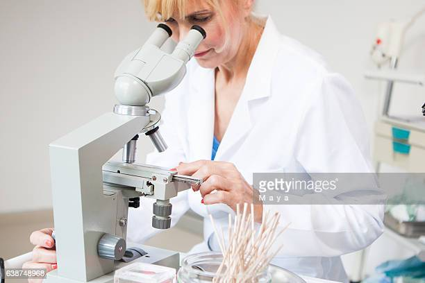 in laboratory for in vitro fertilisation - pelvic exam stock photos and pictures