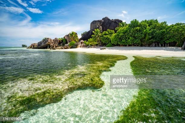 dans la lagune du paradis des îles tropicales - destination de voyage photos et images de collection