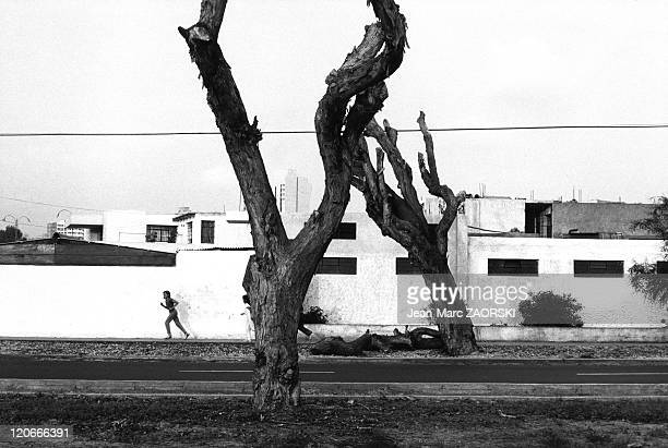 In Lima Peru on December 04 1984 Ejercito Avenue