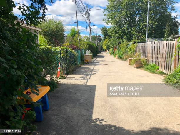 In Montreal's AhuntsicCartierville district a green alley has been created near SaintHubert Street a busy commercial artery in Canada's second...