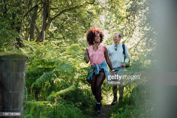 in our happy place - woodland stock pictures, royalty-free photos & images