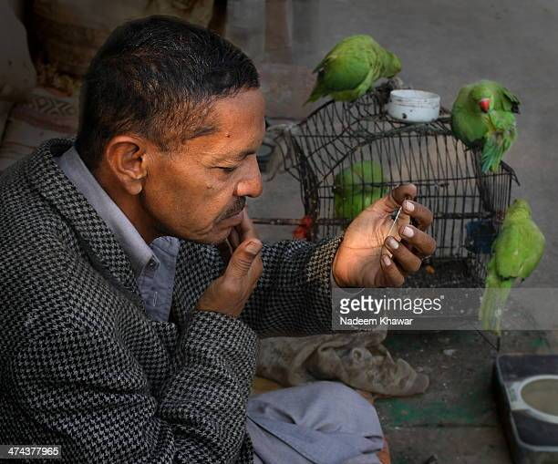 In Pakistan Fortune teller use the parrot for this purpose/ A Fortune teller laid his shop on footpath and parrots are out from cage and he himself...