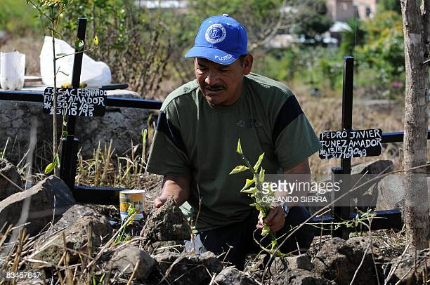 """In Spanish by Noe Leiva Honduran builder Pedro Funez, plants carnations on the graves of two of his children at the cemetery for the poor """"Divino..."""