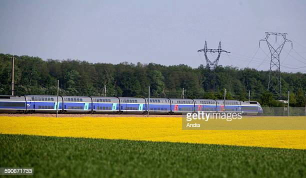 TGV in speed train in the countryside and field of colza