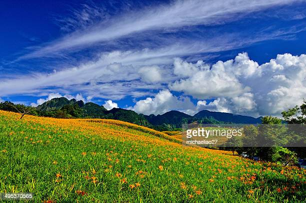 _dsc0956~1   in taiwan r.o.c at hu - hualien county stock pictures, royalty-free photos & images