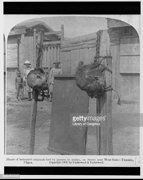 In the aftermath of the Boxer Rebellion the heads of two criminals have been tied by their queues to stakes outside of Tianjin's West Gate