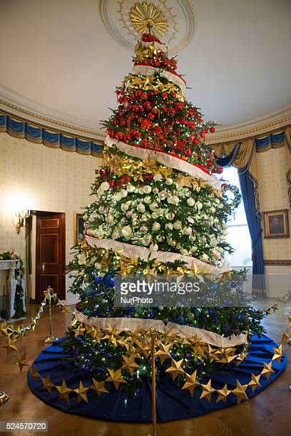 In the Blue Room is this year's White House Christmas Tree It is an 185foot Fraser fir grown by Jay and Glenn Bustard in Lansdale Pennsylvania...