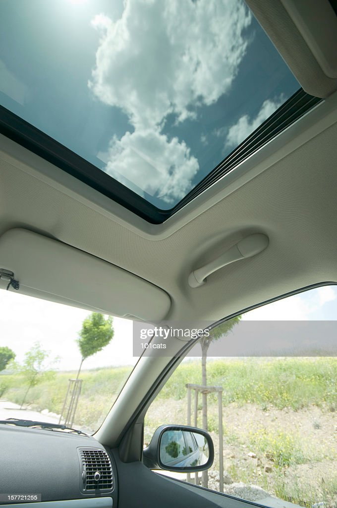 in the car : Stock Photo
