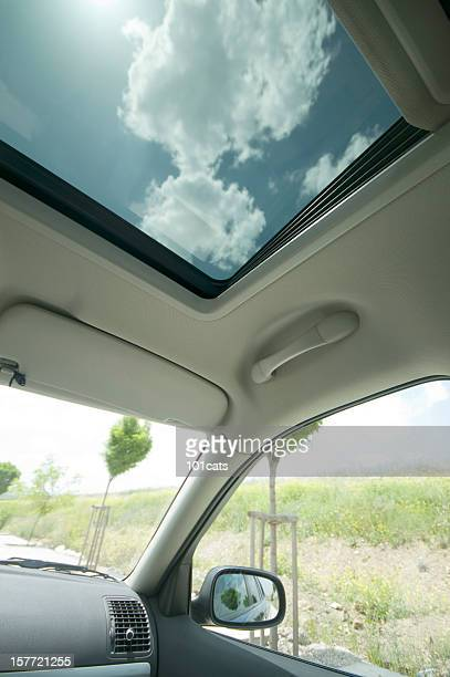 in the car