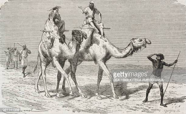 In the desert on camels drawing by Emile Antoine Bayard from Exploration of the Nile tributaries of Abyssinia 18611862 by Samuel Baker from Il Giro...